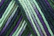 Caron Simply Soft Paints Acrylic Aran Knitting Wool Yarn 113.4g -0019 Passion