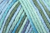 Caron Simply Soft Paints Acrylic Aran Knitting Wool Yarn 113.4g -0004 Spring Bro