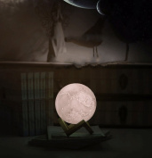 LED Moon Lamp, 3D Lunar Moon Night Light with Wood Stand and Hanging Hole, USB Rechargeable, Dimmable 3 Level Brightness Cool White, Yellow and Warm White Home Decorative Lights , Best Girlfriend Gift