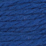 Erika Knight Maxi Wool 200 Canvas