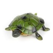 Needra High Simulation Animal tortoise Infrared Remote Control Kids Toy