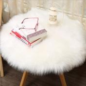 Saihui Soft Artificial Sheepskin Rug Chair Cover Artificial Wool Warm Hairy Carpet Seat Pad