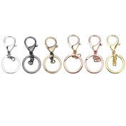 Ucatcher 6 Assorted Colours Metal Snap Hook Lobster Clasps Lanyard with Keyring for Keychain DIY Bags