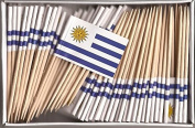 One Box Uruguay Toothpick Flags, 100 Small Uruguayan Cupcake Flag Toothpicks or Cocktail Picks