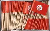 One Box Tunisia Toothpick Flags, 100 Small Tunisian Cupcake Flag Toothpicks or Cocktail Picks