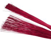 Steingaesser 01310 00 1100 GIUNCO Approx. 100 cm Red