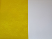 Yellow Single Sided Tyvek 75GSM - 10 x A4 sheets
