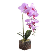 HimanJie Artificial Flowers Phalaenopsis Bonsai Simulation Potted Flowers Home Creative Decoration