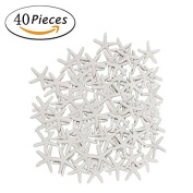 40 Pcs Starfish White Resin Pencil Finger Sea Star for Wedding Party Christmas, Home and Craft Project