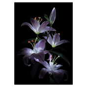 squarex Exquisite Flowers 5D Diamond Embroidery DIY Craft Painting Cross Stitch Mosaic Home Decor