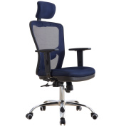 High Back Mesh Office Chair with Adjustable Headrest and Lumbar Support