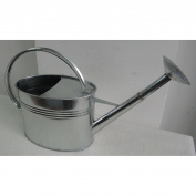 Austram 3.8l Galvanised Watering Can with Long Spout