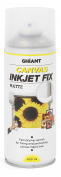 Ghiant 400 ml Canvas Ink Jet Fix Can, Matt/Transparent