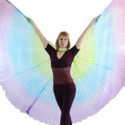 Danzcue Green-Blue-Purple Gradient Belly Dance Worship Angel Wings With Sticks