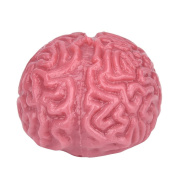 huichang Novelty Pink Squishy Brain Toy Squeezable Fun Toys Relieve Stress Ball Cure Toy