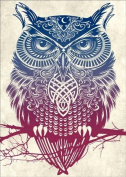DIY 5D Diamond Painting by Number Kit, Colourful Owl Crystal Diamond Embroidery Cross Stitch Arts Craft Canvas for Wall Decor