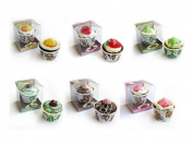 Pack of 20 Ice Cream Terrines with Soap 90 gr Presented in Gift Box – Soaps Cheap and Original for details of Weddings, Christenings, Communions Invited