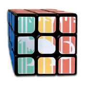 3x3x3 Magic CubeDinosaur Colourful Painting Game Puzzle Toys Rubik Cube For Adults Kids Anti Stress Anti-Anxiety
