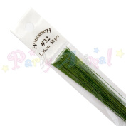 Florist Wire and Sugarcraft Wire - Green 32 Gauge