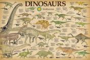 Smithsonian- Dinosaurs Info Chart Poster 90cm x 60cm