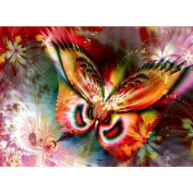 DIY 5D Diamond Painting, Crystal Rhinestone Diamond Embroidery Paintings Pictures Arts Craft for Home Wall Decor Dream Butterfly 30cm X 40cm