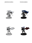 Pathfinder Roleplaying Game Unpainted Miniatures