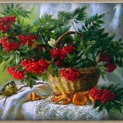 5D DIY Diamond Painting by Number Kits, Crystal Rhinestone Diamond Embroidery Paintings Pictures Arts Craft for Home Wall Decor Red Fruits In A Basket