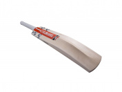 Grey Nicolls GN Players Cricket Bat (2018) - Short Handle, 0.9kg 270ml