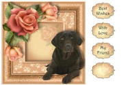 Floral Paw Prints - Chocolate Lab 8x8 Quick Topper by Anne Lever