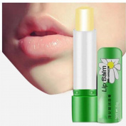 Oceaneshop 5g Beauty Lipstick Moisturiser Protection Lips Chamomile Deep Moisturising Lip Balm