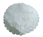 TFXWERWS Beautiful Wedding Party Decor Romantic Tissue Paper Flower Ball