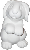 Cute Bunny Money Bank - Paint Your Own Bunny-rific Ceramic Keepsake