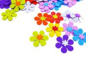 HAKACC 160 Pcs Foam Flower Shape For Craft Art Project