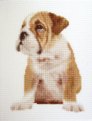 Adorable Wrinkles Counted Cross Stitch kit by Orcraphics