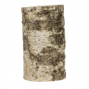 Walnut Hollow 18cm Rustic Birch Pillar for Home Decor, Weddings, Candle Stands & Art & Craft Projects