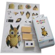 Modular Origami Kit-Owl