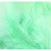 Flat Turkey Feathers 14g-Mint