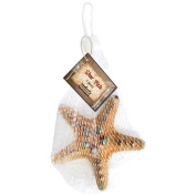 Gathered, by BCI Crafts Bottle Cap, Star Fish