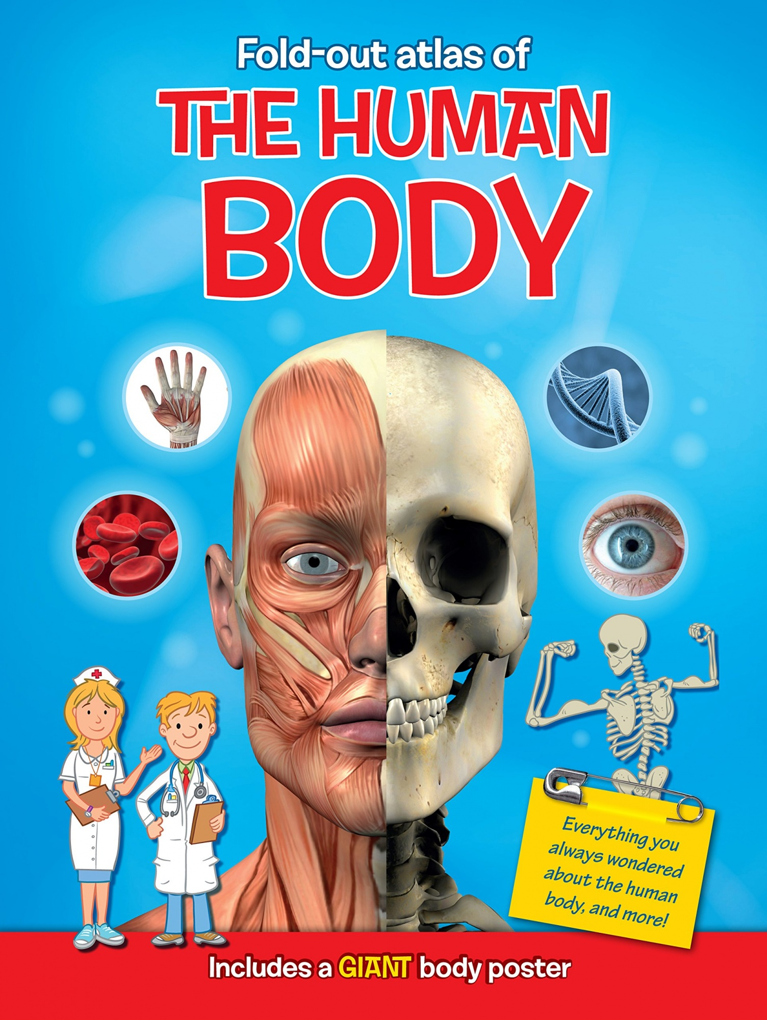 Atlas Of The Human Body Books Books: Buy Online from Fishpond.com.au