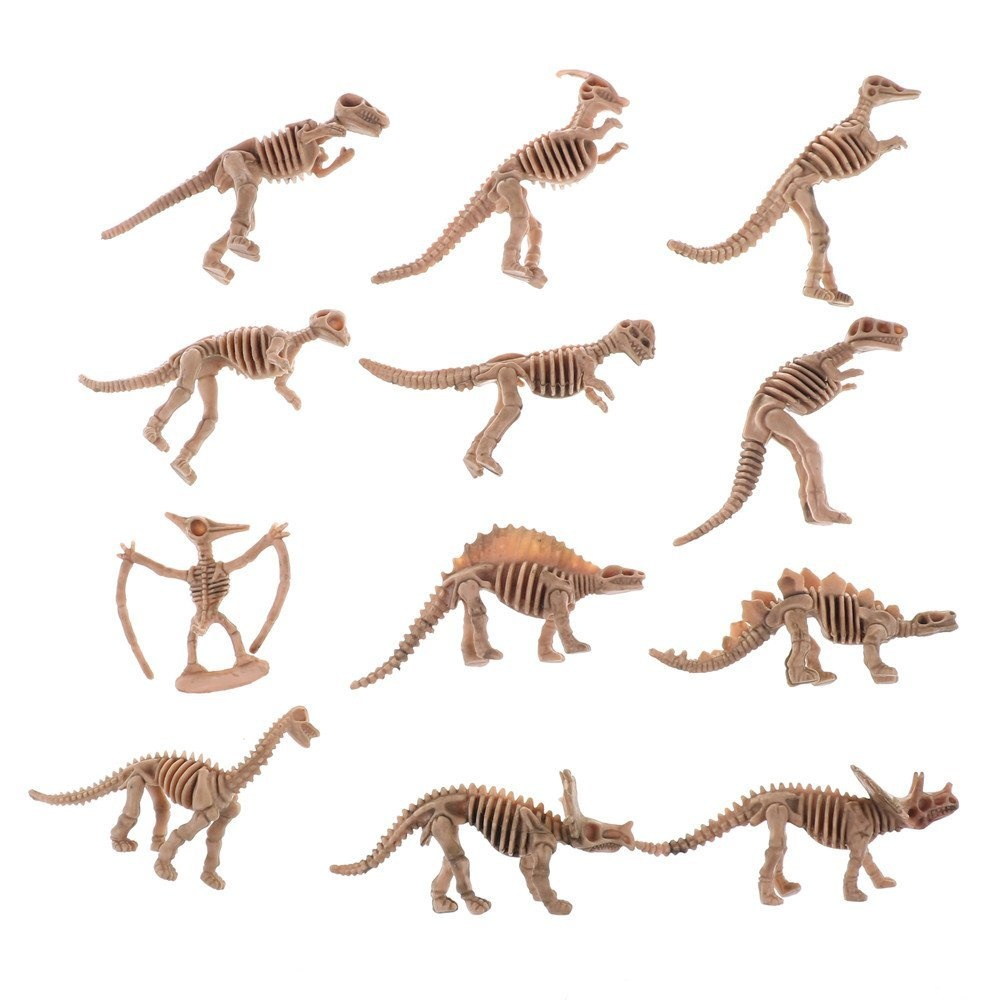 DINGJIN 12 Pcs Assorted Dinosaur Fossil Skeleton Toys Education Realistic  Character Toy Dinosaur Toys for Kids