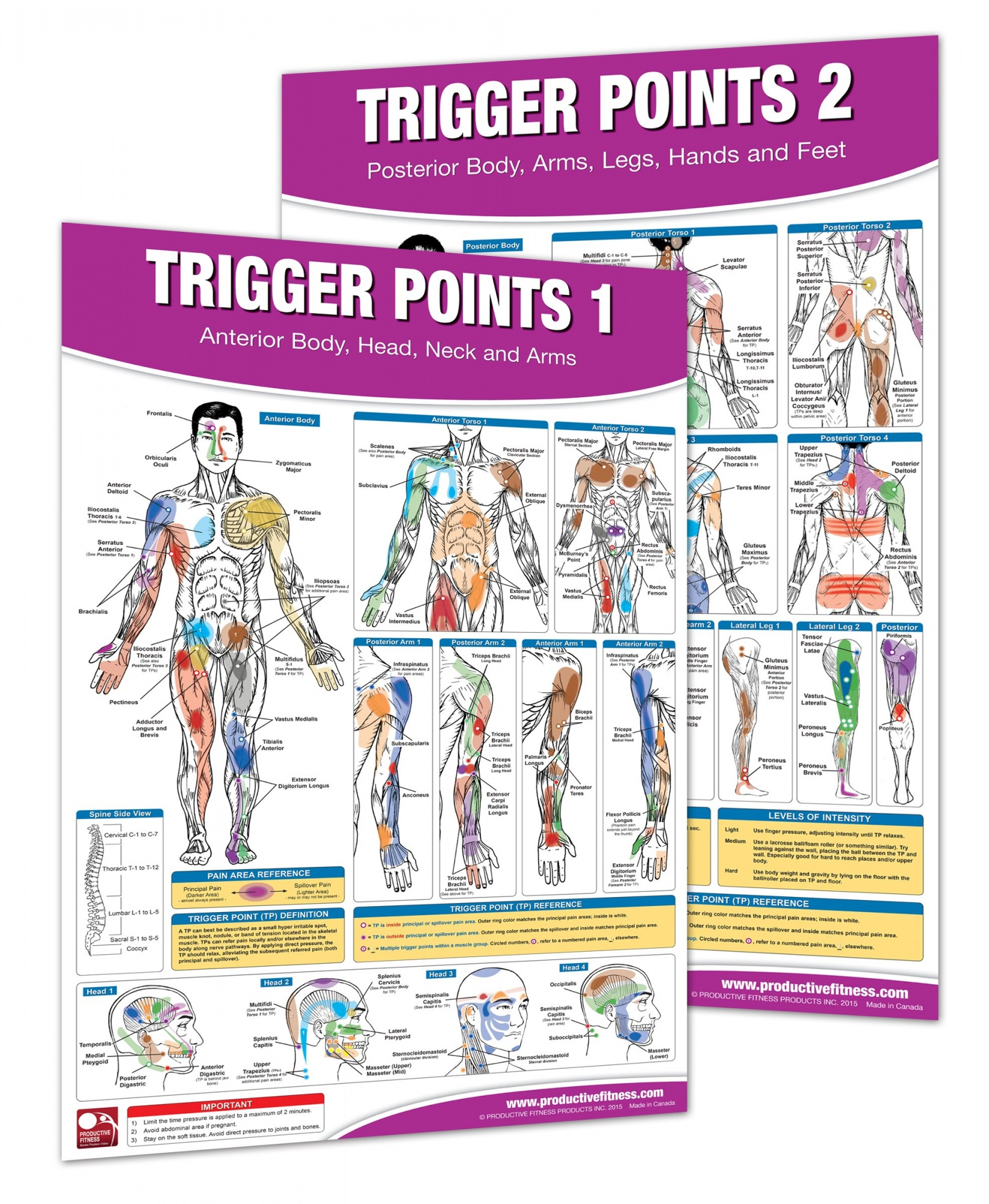 healing through trigger point therapy a guide to fibromyalgia myofascial pain and dysfunction